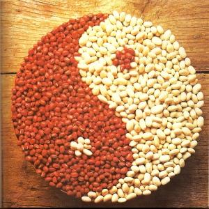 alimentacao macrobiotica 4